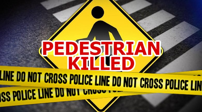pedestrian killed hit-and-run fatal, baseline