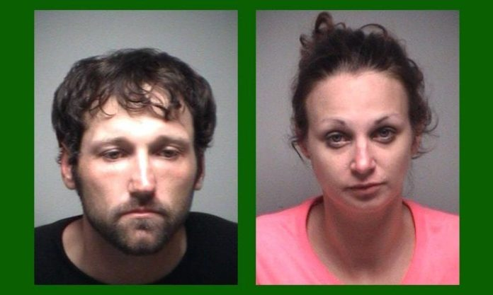 Couple Arrested After String of Burglaries and Home Invasion in Leesburg